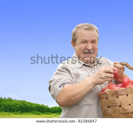 Senior man, harvesting a apple - stock photo