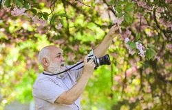 Senior man photographer blooming trees background. Cameraman retirement. Professional photographer. Capturing moments that captivate your heart. Photographer filming. Perfect frame. Pension hobby