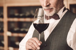 Senior man sommelier standing near cabinet holding glass smelling red wine close-up concentrated