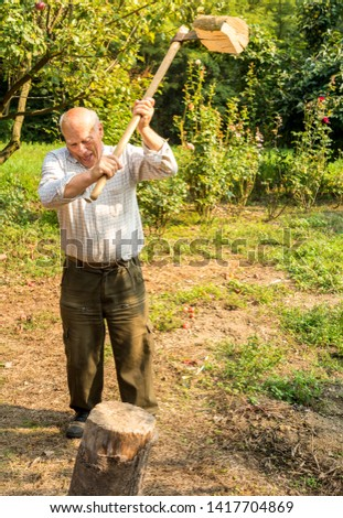 Senior man splitting wood with ax in the garden.