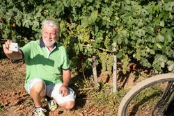 Senior man with white hair and beard takes a selfie with bunches of grapes behind him. E bike close to him, for healthy lifestyle. One people caucasian.Green vineyard in background.