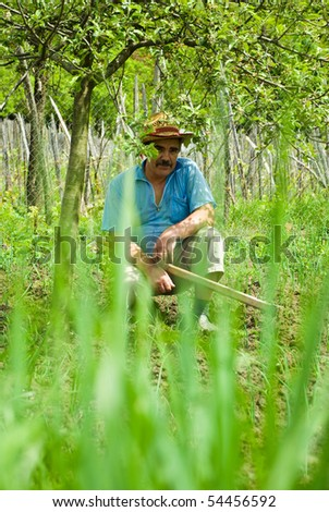 Senior peasant sit in the shade of a tree , hold a hoe and making a break from digging his ground with spring onion,green herbs in foreground,selective focus on man