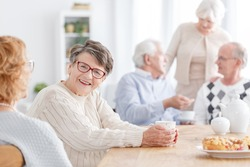 Senior social life concept, group of senior people at old age home talking and having good time together, focus on an elderly lady smiling at camera