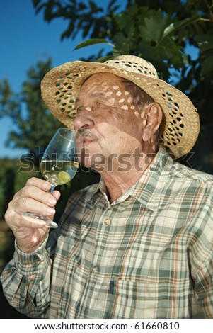 Senior vintner tasting wine outdoors in vinery.