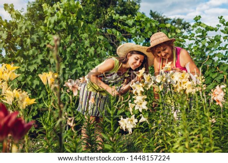 Senior woman and her daughter gathering and admiting flowers in garden. Gardeners cutting lilies off with pruner. Family gardening concept