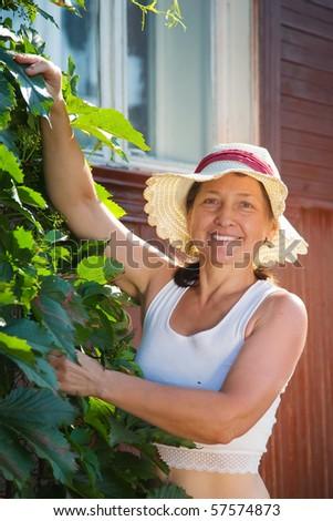 senior woman gardener with  virginia creeper in summer