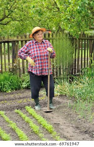Senior woman gardening - hoeing - stock photo