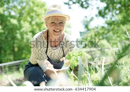 Senior woman gardening on beautiful spring day