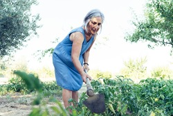 senior woman in a vegetable garden with hoe