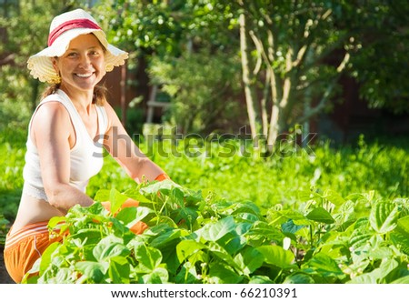 Senior  woman sitting in plant of pea - stock photo