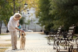 Senior woman walking with dog in park