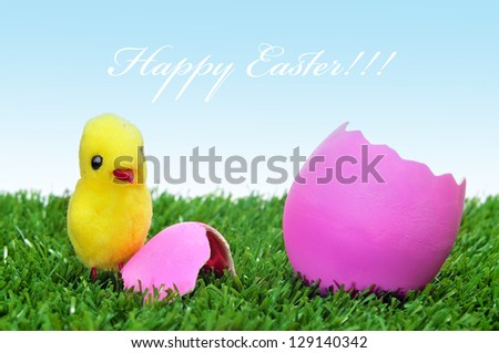 sentence happy easter and a teddy chick emerged from a hatched pink easter egg on the grass