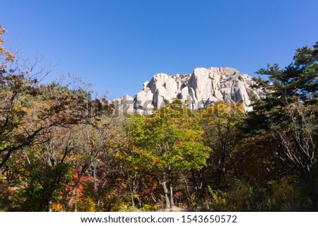 Seorak mountain maple scenic area, republic of korea