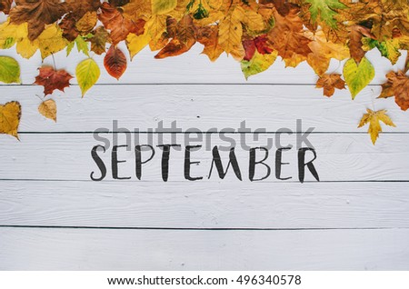 September Handwritten Modern Calligraphy On Colorful Autumn Dry Leaves Border Frame White Painted Rustic Barn