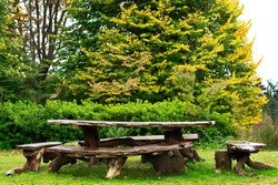 Sequoia made wood table and bench for picnic in a holliday camp in the middle of the woods
