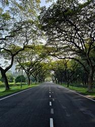 Serdang, Selangor-December,10,2020: Trees line country road.