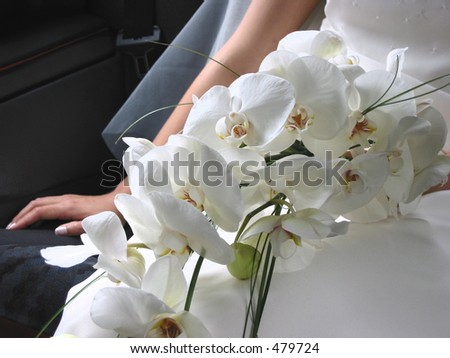 Serene closeup of bridal bouquet of orchids held by a young bride wearing traditional white dress and veil. The hand resting on the bridal car seat has a nice manicure.