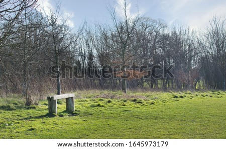 Serene green space with blue sky and bench and nobody there. A sunny but cold winters day. A place for reflection, being alone and meditation.