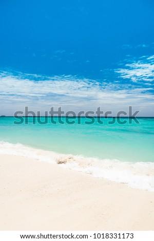 Serene Waters Heavenly Blue  #1018331173