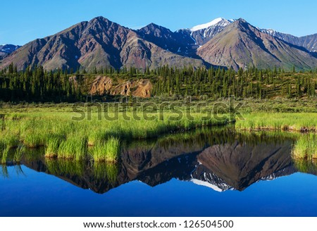 Serenity lake in tundra on Alaska #126504500