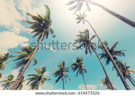 Serenity tropical beach #614473526