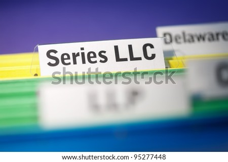 Series limited liability company, LLC business organization