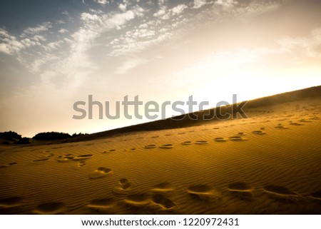 Series of fooprints on the sand dunes desert during a magic sunset sky atmosphere. pattern and yellow for travel and alternative lifestyle outdoors activity concept. no people around just signs