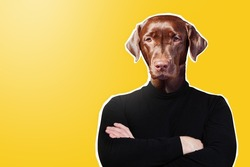 Serious dog with human torso. Contemporary art collage. Dog man on yellow background. He stands with his arms crossed.  metaphor of involuntary person. Man with bad temper. Guy with crappy temper.