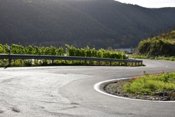 serpentine road through the vineyards into Mosel valley