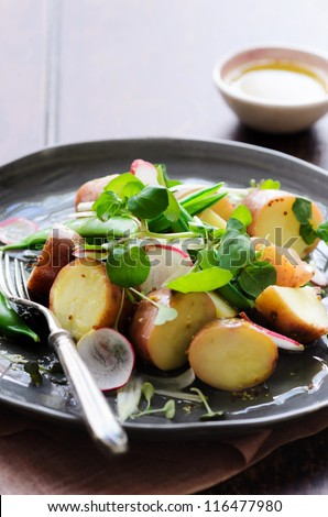 Serving of healthy potato salad with peas, green shoots, radish and mustard dressing. styled by food stylist