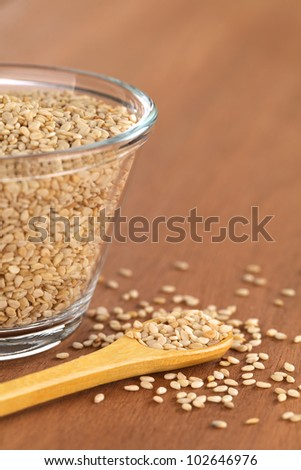 Sesame seeds on small wooden spoon with a glass bowl beside (Selective Focus, Focus on the front sesame seeds on the spoon)