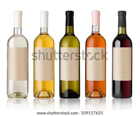 Set 5 bottles of wine with white labels isolated on white background.