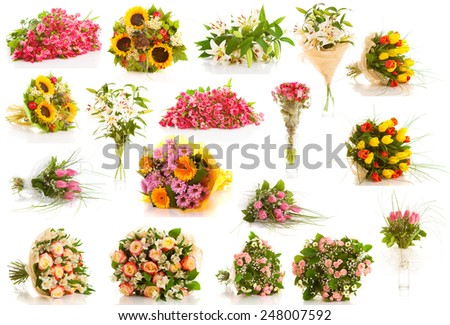 set bouquet of flowers on a white background isolated