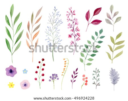Set collection arrangement poster of hand painted drawn watercolor cliparts ofleaves and flowers