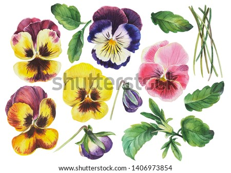 Pile Of Pansies Autumn Colors Ribbon Flowers