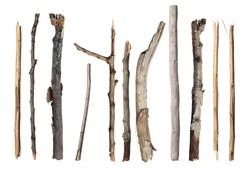 Set dry rotten branches isolated on white background, clipping path