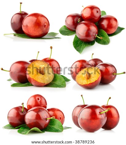 set fresh plum fruits with cut and green leaves isolated on white background