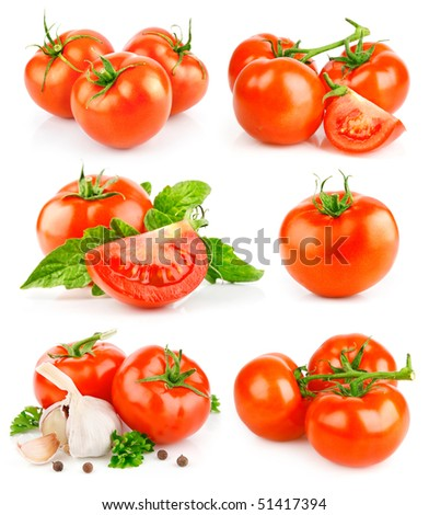 set fresh tomato fruits with green leaves isolated on white background