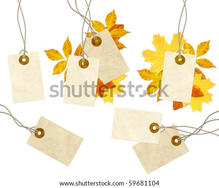 Set - labels and autumn leaves. Isolated over white