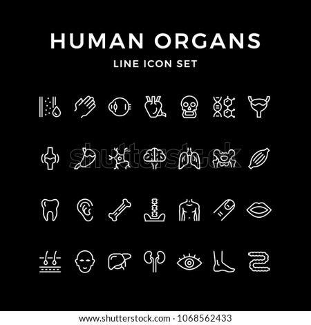 Set line icons of human organs isolated on black