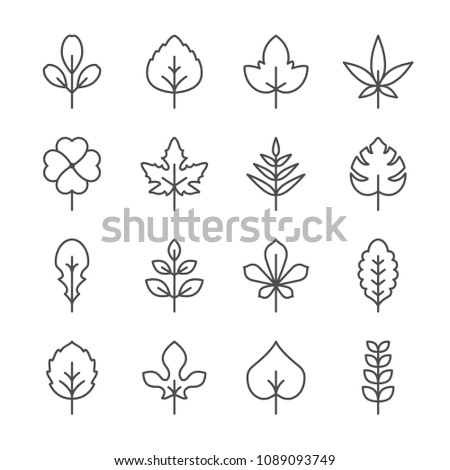 Set line icons of leaf isolated on white