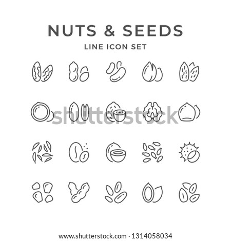 Set line icons of nuts and seeds isolated on white