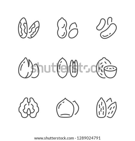 Set line icons of nuts isolated on white
