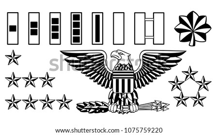 Set of American military army officer ranks insignia badges icons