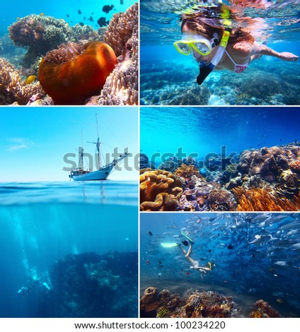 Set of an underwater pictures of tropical sea, water activities and vivid marine life