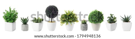 Set of artificial plants in flower pots isolated on white. Banner design Photo stock ©