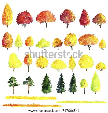 set of autumn trees drawing by watercolor, bushes, firs,pines and deciduous, red and yellow foliage,isolated natural elements, hand drawn illustration