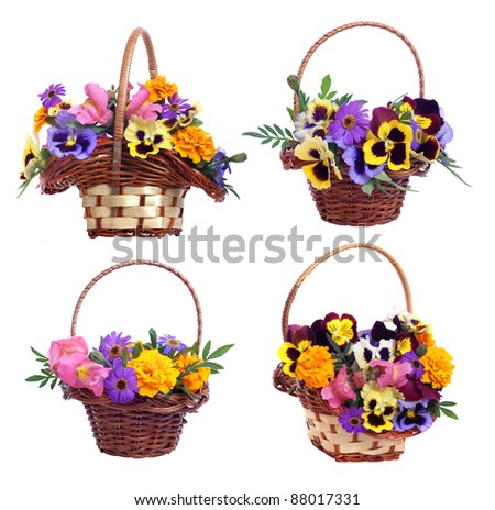 set of baskets with various flowers on white background
