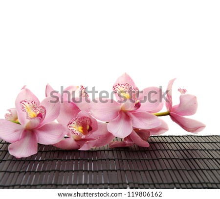 Set of beautiful branch orchid on mat