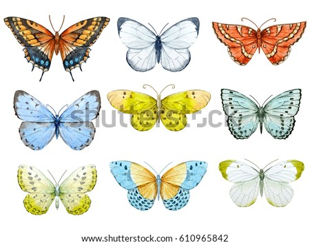 Set of beautiful watercolor butterflies.  blue, yellow and red butterfly illustration